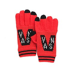 Vans - Team Spirit Gloves